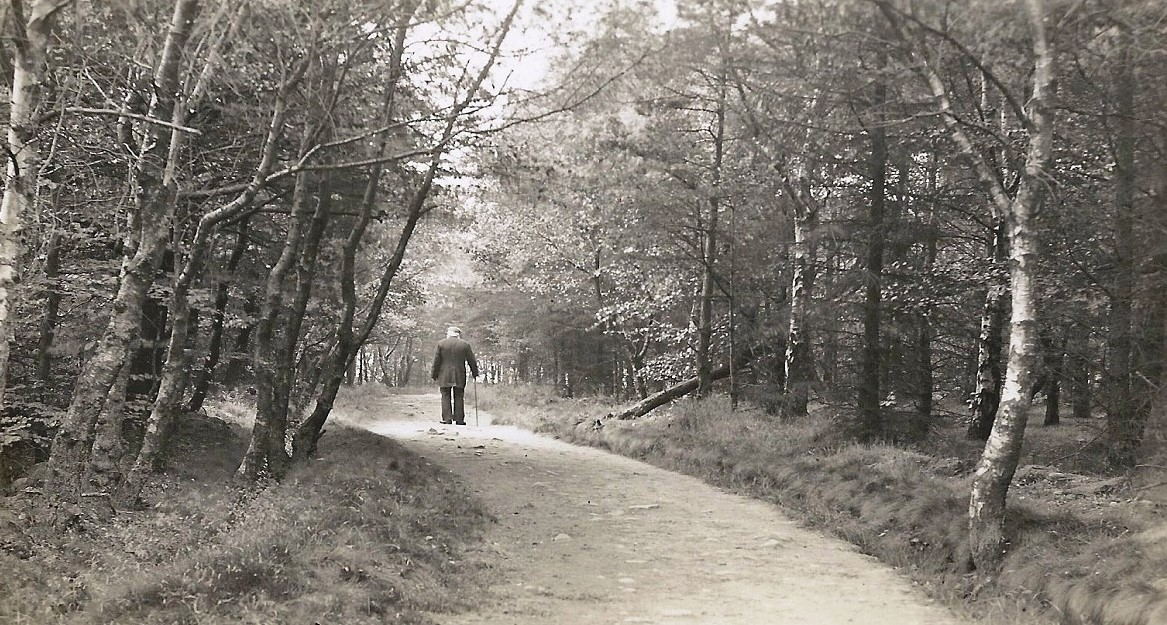 Yorkgate Wood 1900